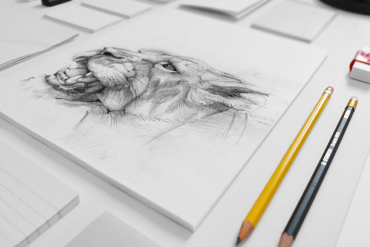Mockup_Lion_drawing