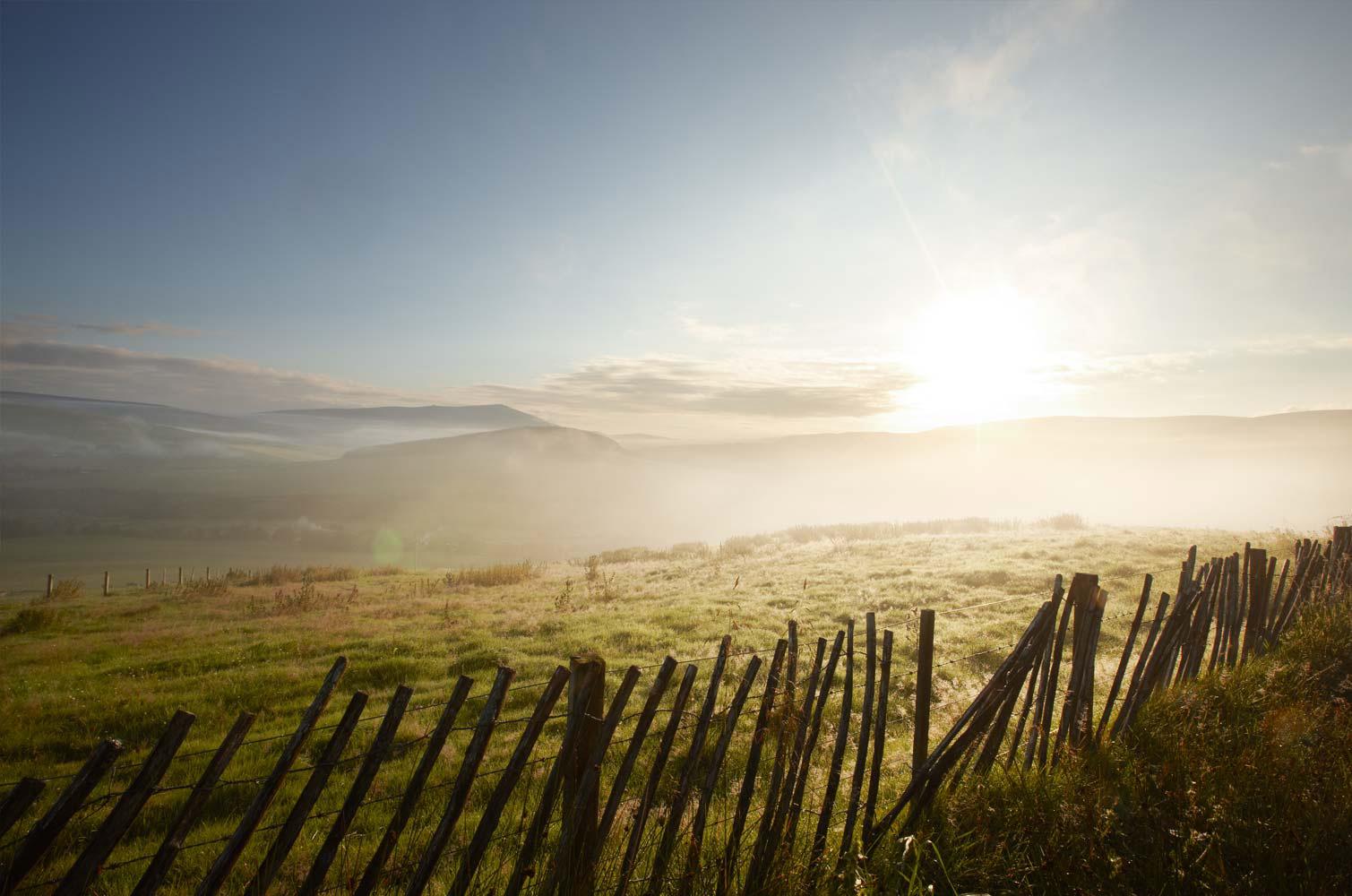 Pernodricard_landscapes06